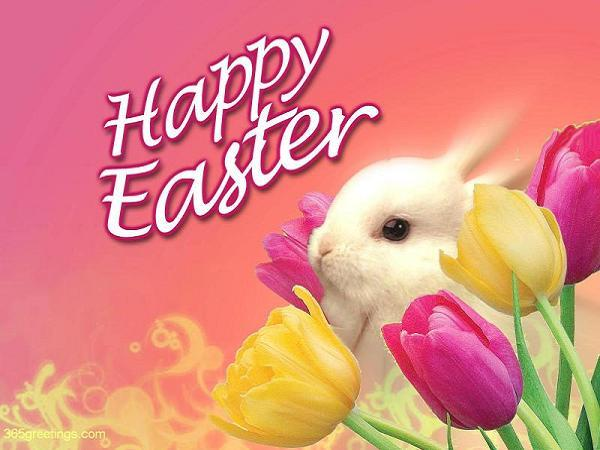 happy-easter-lavo_collections